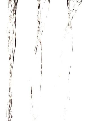 Nos Fleurs de Bach - Rock Water - Eau de roche